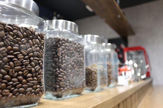 コーヒー豆 犬 大分県宇佐市 CafeBar Tiara カフェバルティアラ